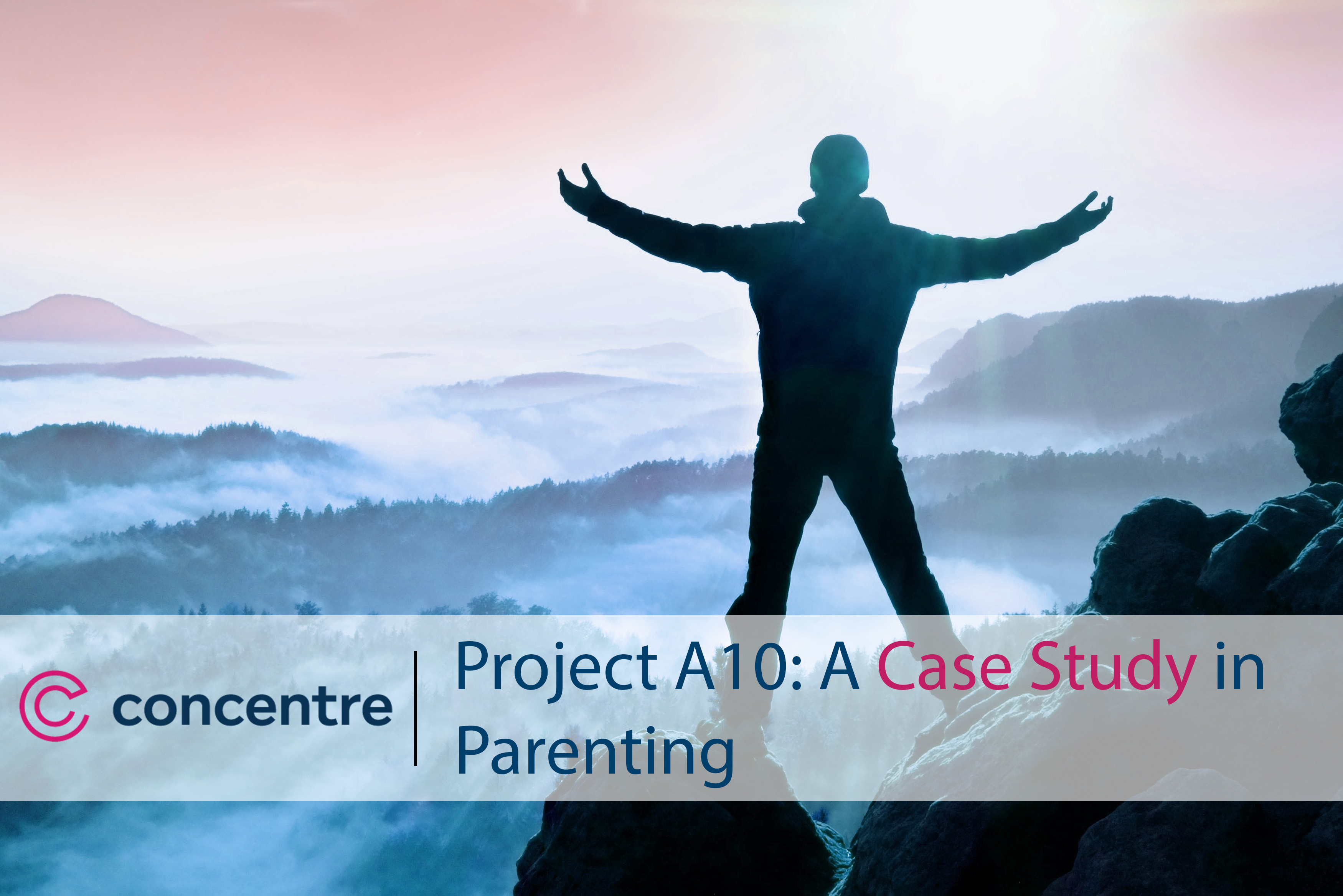 Project A10: A Case Study in Parenting
